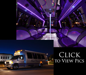 Arlington Large Party Bus